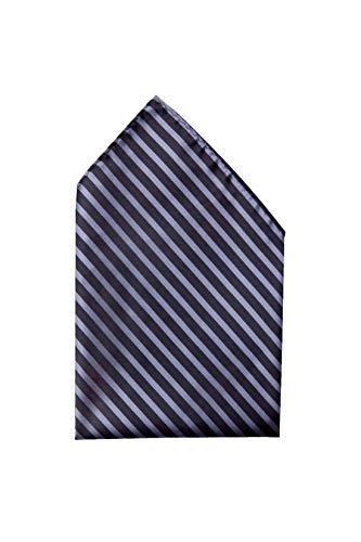 Fabio Farini - Cravates, nœuds papillons et mouchoirs attrayants et élégants pour la robe à cravate noire code noir mouchoir rayures noires bleu foncé