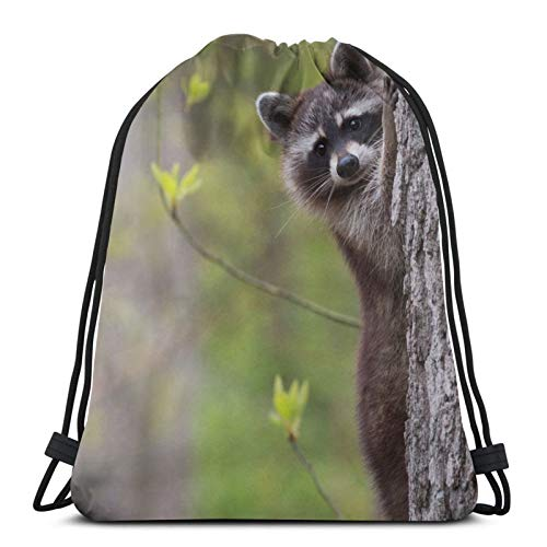 Raccoon Tree Face Peeps Trunk Background Bokeh Leaves Pores Unisex Drawstring Backpack Bag, Polyester Cinch Sack, Waterproof Sport Gym Bag Casual Daypack for Women