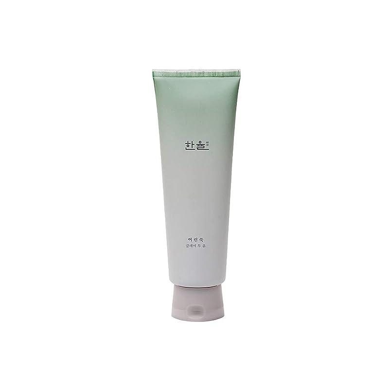 滝ぶどう聖域【HANYUL公式】 ハンユル ヨモギクレイトゥーフォーム 170ml / Hanyul Pure Artemisia Clay to foam 170ml