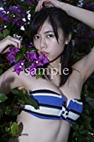 北向珠夕 モデル 2Lサイズ写真2枚 vol.27