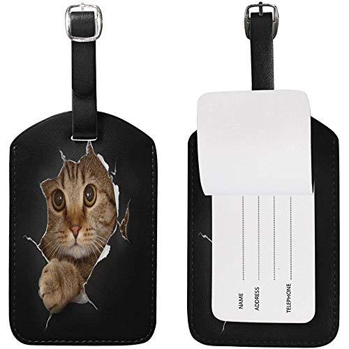 Gepäckanhänger Lustige Katze, die aus zerrissenem Papier heraus späht Schwarzer Reise-Namensschild-Kartenhalter für Gepäck-Koffer-Tasche 2 Stück