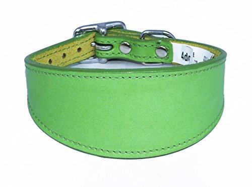 35,6–43,2 cm Uni Vert en Cuir Collier pour lévrier