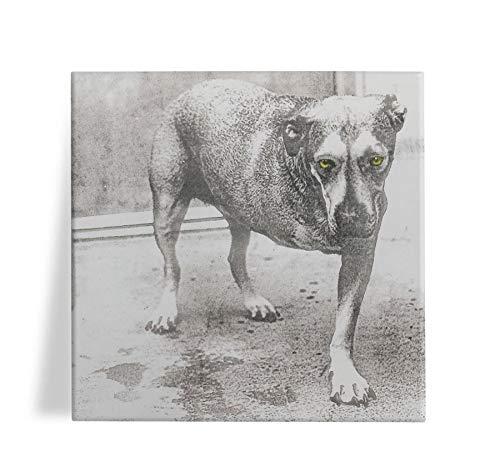 Azulejo Decorativo Alice in Chains 15x15
