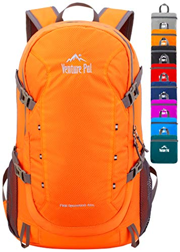 Pacsafe Venturesafe GII Anti Theft Travel Backpack/Daypack-Navy Blue, 25 Liter, Black