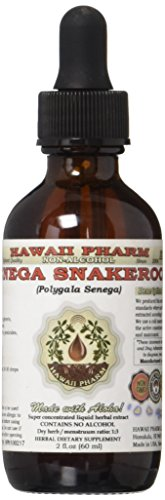Senega Snakeroot Alcohol-FREE Liquid Extract, Senega Snakeroot (Polygala Senega) Dried Root Glycerite Herbal...