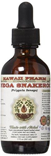 Senega Snakeroot Alcohol-Free Liquid Extract, Senega Snakeroot (Polygala Senega) Dried Root Glycerite Natural...
