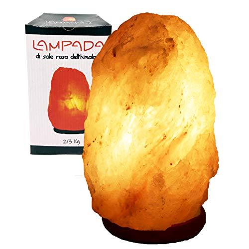 lampada di sale lidl