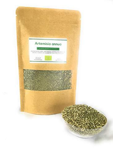 Artemisia annua, 100% biologica, prodotta in Francia
