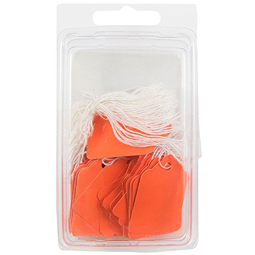 JAM PAPER Gift Tags with String - Mini - 1.75 x 1.09 - Orange - 50/Pack