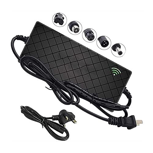 RLRL Cargador de batería de Litio de 24V para Smart Electric Scooter, 29.4V 4A / 5A Adaptador de Corriente Universal Li-Ion para Skateboard Hoverboard (Color : F, Size : 5A)