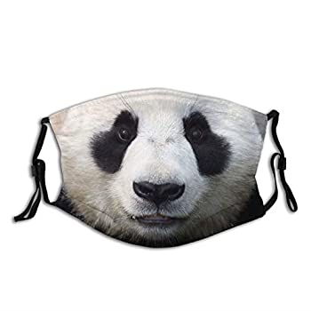 Cute Panda Bear Face Mask Animal Mask Fashion Scarf Reusable Balaclavas For Men Women