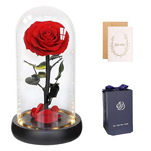 anaoo Die Schöne & das Biest Ewige Blume Echte Rose im Glas mit LED, Romantisches Geschenk zum Valentinstag, Muttertag, Geburtstag, Jubiläum, Weihnachten, Hochzeit, High-End-Geschenkbox