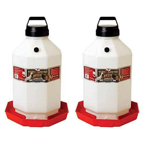 Little Giant PPF7 7 Gallon Capacity Automatic Chicken Poultry Waterer (2 Pack)