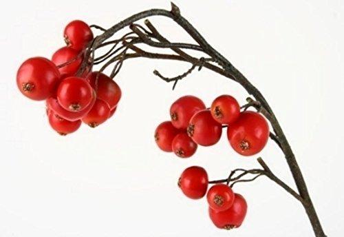 Shophaus24 Künstlicher Apfel Deko Zweig mit roten Mini Äpfel. Länge 59cm. 1 Stück