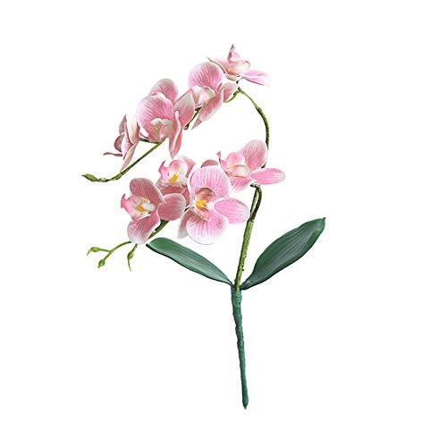 Orchidée Artificielle pour décoration d'intérieur et d'extérieur Motif dragonaur