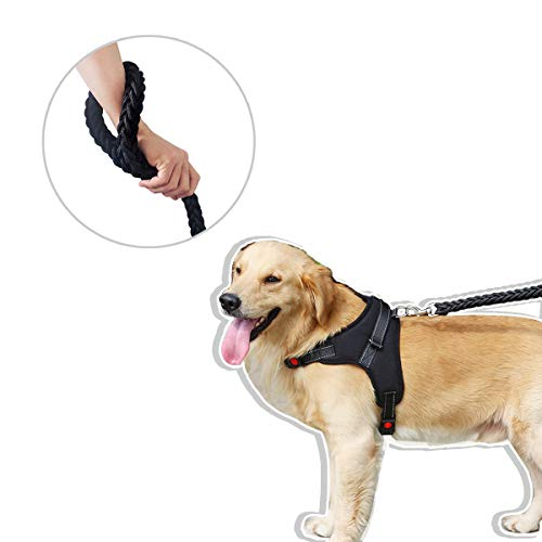 ChilMo No Pull Dog Harness and Leash Set Breathable Adjustable Comfort Nylon Braided Rope Leash Heavy Duty Highly Reflective Vest Harness with Handle for Medium/Large Dogs Best for Training Walking