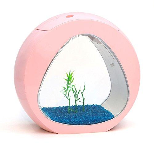allpondsolutions Nano Curve kleines Aquarium, Kaltwasser Tropen, LED-Beleuchtung, 6Liter, pink