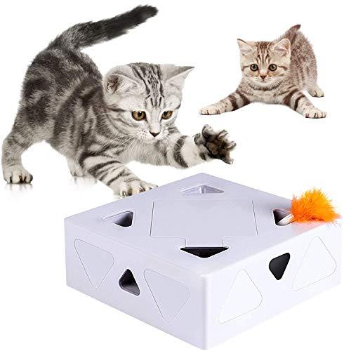 Magic box toys the best Amazon price in SaveMoney.es
