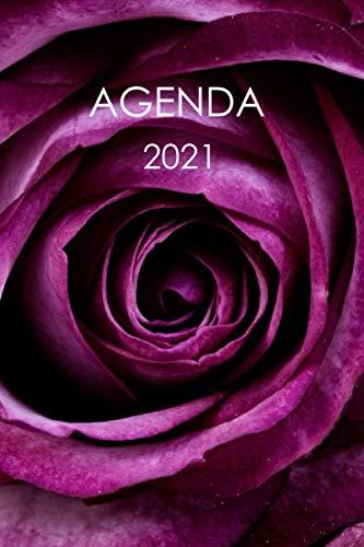 Agenda 2021: Agenda Chic et élégant  Calendrier organiseur...