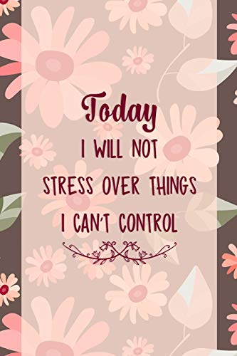 Today I Will Not Stress Over Things I Can't Control: Good Day Notebook Journal Composition Blank Lined Diary Notepad 120 Pages Paperback Mountain Flowers