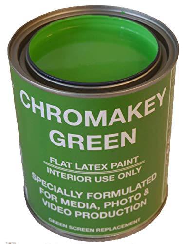 ChromaKey Video Paint 1 Quart Green Screen Equivalent