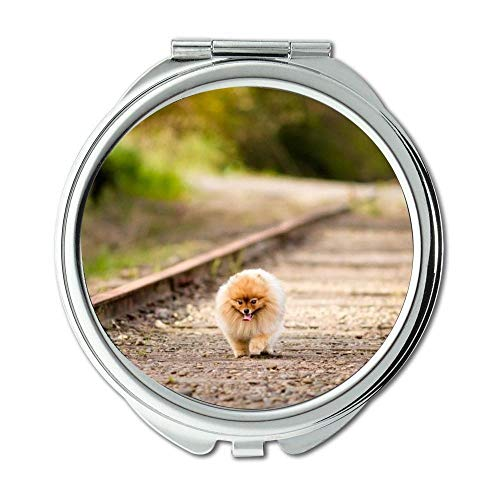 Yanteng Spiegel, runder Spiegel, Boston Terrier Hündchen Lustige Dogge Hund, Taschenspiegel, 1 X 2 X Lupe