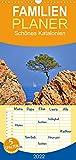 Schönes Katalonien (Wandkalender 2022 , 21 cm x 45 cm, hoch): Katalonien in Spanien ist immer eine Reise und einen Blick wert (Monatskalender, 14 Seiten )