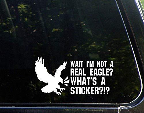 Grappige stickers voor motorfietsen wachten ik ben geen echte adelaar? Wat is een sticker? Raam Auto Laptop Stickers voor Volwassenen 20cm