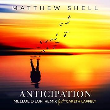 Anticipation (Melloe D LoFi Remix)