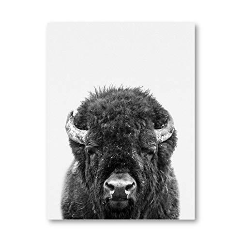 Impresiones en lienzo Bisonte Negro Blanco Animal Photo Poster Nursery Decor Highland Animals Pintura de la lona Imagen de la habitación de los niños Decoración de la pared 60x80cm Sin marco