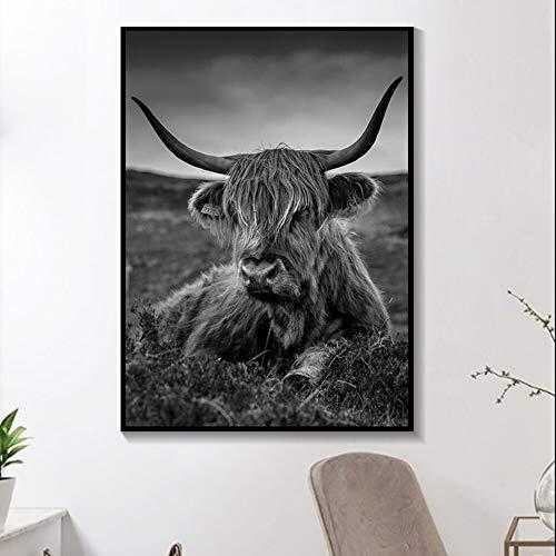 Pintura minimalista de lienzo de animales de granja, arte de pared de vaca de las tierras altas negras, carteles de toros de montaña e impresiones de nieve, imágenes para habitación sin marco 40x50cm