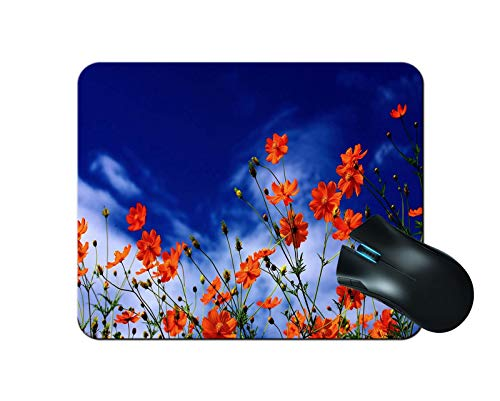 XUTAI Mousepad Mouse Mat Mouse Pad Office NonSlip Rubber Mousemat Gaming Mouse Pad 93 X 79 Inch 240mmX200mmX3mm for Computer Mouse Flower P11