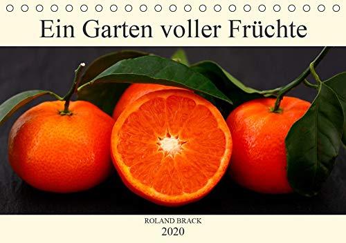 Ein Garten voller Früchte (Tischkalender 2020 DIN A5 quer): Leuchtent buntes Obst und Gemüse auf dunklem Hintergrund (Monatskalender, 14 Seiten ) (CALVENDO Lifestyle)