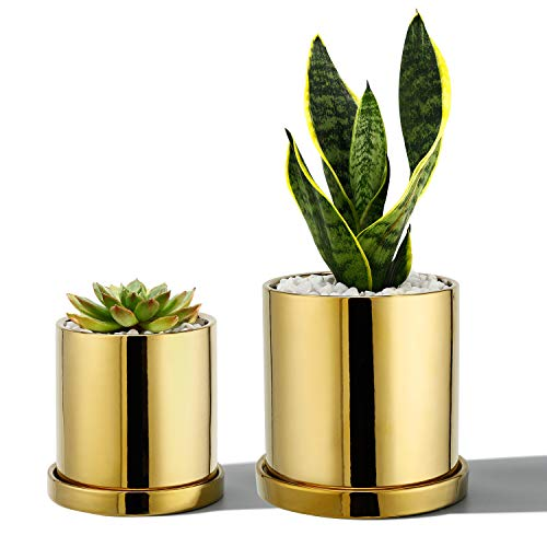 POTEY Ceramic Pots for Plants - 3.8 inch + 5.1 inch Planter Cylinder Flower with Drain Hole Sacuer Minimalism for Indoor Garden Glazed - Set of 2, Golden