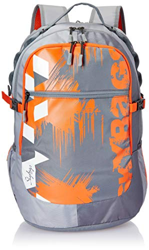 Skybags Crew 06 21 cms Grey Laptop Backpack (CREW 06)