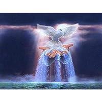 QMGLBG 5Dダイヤモンド塗装 神の手平和鳩風景ダイヤモンド絵画クリスタルラインストーン刺繍アート工芸装飾30*40cm