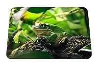 26cmx21cm マウスパッド (カエルの葉日陰の避難所) パターンカスタムの マウスパッド