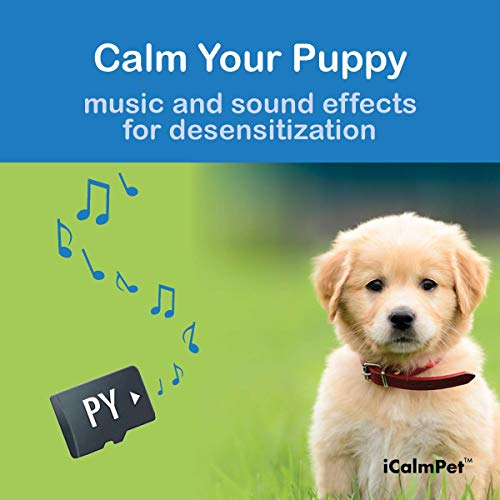 iCalmDog Puppy Micro   for Calming and Prevention of Noise Phobias and Sound Sensitivities in Younger Canines   Music by Through a Dog's Ear   Micro SD Sound Card