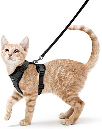 rabbitgoo Cat Harness Escape Proof with Leash Set for Walking, Puppy Kitten Dog Harness No Pull No Choke Design Adjustable Reflective Stripe Vest Harnesses for Small Medium Cats, S Black