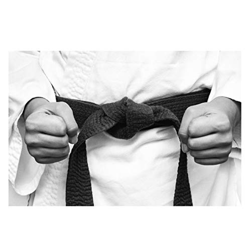 ZFLSGWZ Karate Kimono Fighter Sport Fists Posters E Impresiones Lienzo Arte De La Pared Decoración De La Habitación De Los Niños Pintura Imagen Impresa En Lienzo-50X70Cm Sin Marco