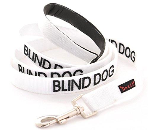 Dog Leash - With Warning
