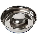 OurPets DuraPet Slow Feed Premium Stainless Steel Dog Bowl, Silver (2040010301)