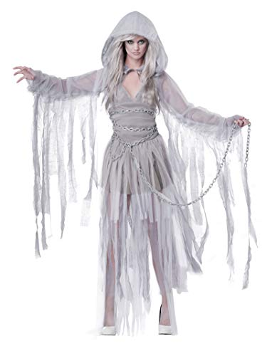 California Costumes Women's Haunting Beauty Ghost Spirit Costume, Gray, Small