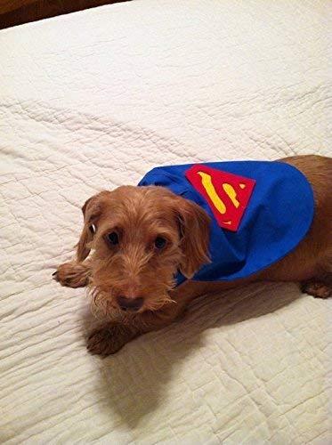 X-Small Dog Superman Super Dog Cape Costume