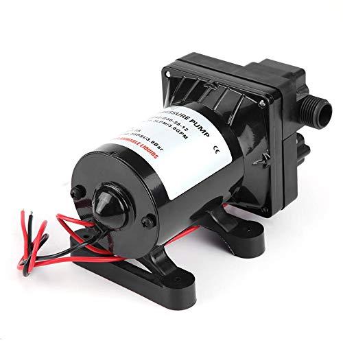 12 V DC Schwarz Druckpumpe, 30 psi / 3,1 bar max Wasserpumpe für RV, Druckwassepumpe aus PVC und Kupfer