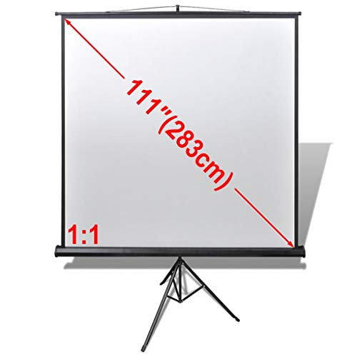 vidaXL Portable Projector Screen with Stand - This Portable Screen is The Best Outdoor Movie Screen with Stand - Indoor and Outdoor Screen,78.7x78.7 inch 1:1