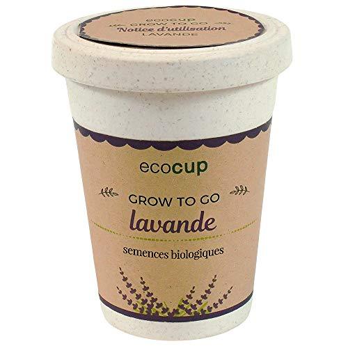 Feel Green Ecocup, Lavande Certifiées Bio, Idée Cadeau (100% Ecologique), Grow-Your-Own/Kit Prêt-à-Pousser, Plantes Dans Coffee Cup 10 x 8 cm, Produit En Autriche