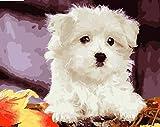 Wbzyj Juegos de Pintura por números Pintura por número para Adultos Kit de Pintura por número en Lienzo para niños Concurso de Dibujo- Perro 16x20 Pulgadas (Sin Marco)