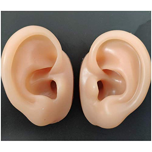 FHUILI Ear Modell Soft-Silikon - Simulation Ohr-Modell weiche Silikon-Ohr Modell für Akupunktur, Ohr Kommissionierung Praxis, Studs Headset Ohrring-Anzeigen Props,B