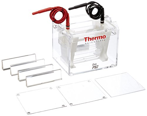 Thermo Fisher Owl P82 Dual Gel Vertical Electrophoresis System, 8-10cm L x 10cm W Gel Size